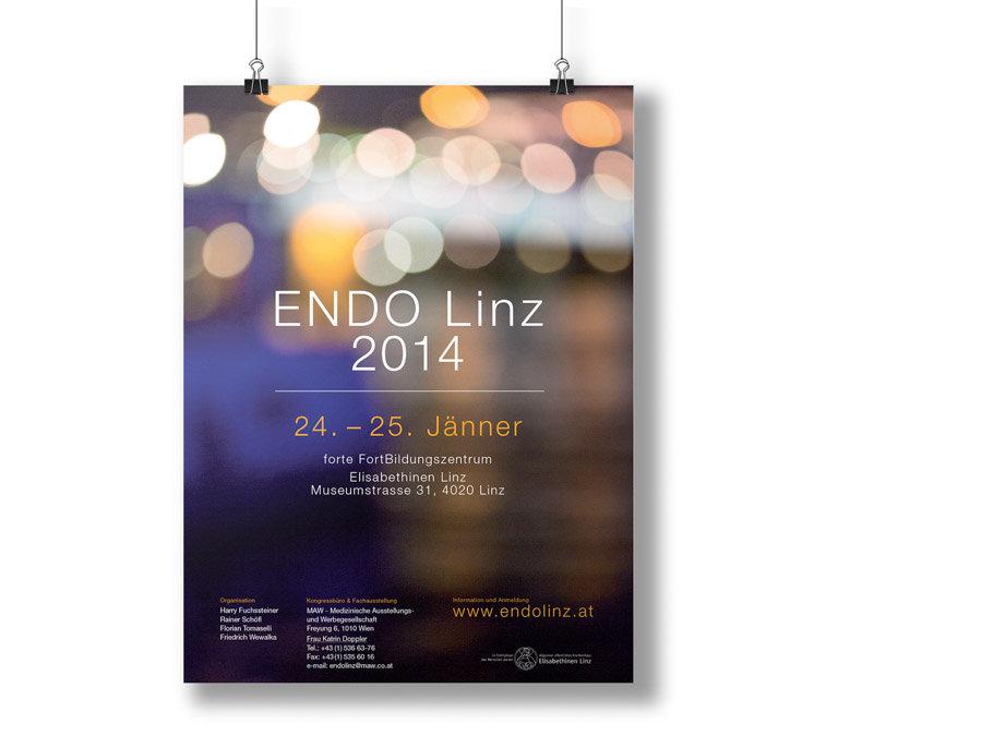 Endo Linz